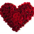 Red Roses in Love Shape isolated on white...