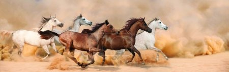Photo for Herd gallops in the sand storm - Royalty Free Image