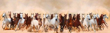 Photo pour Troupeau de chevaux courant dans la tempête de sable - image libre de droit