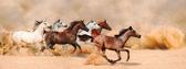 Herd gallops in the sand storm