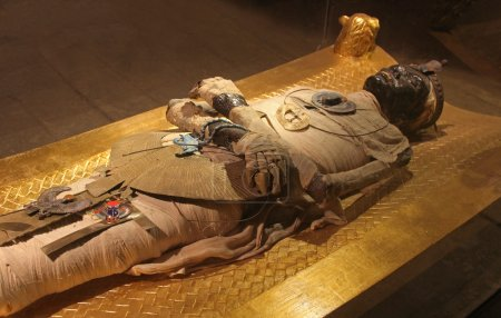 Ancient Egyptian mummy body preserved by mummifica...