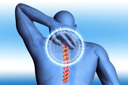 Anatomical vision back pain