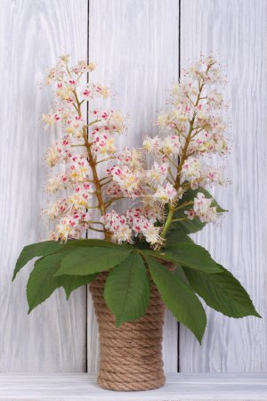 branch of blossoming chestnut tree in a vase on a wooden
