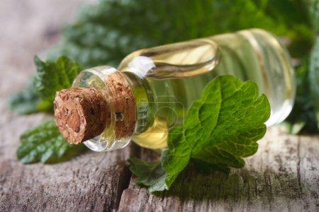 Photo pour Huiles aromatiques Mélisse dans une bouteille en verre aux feuilles fraîches macro horizontal - image libre de droit
