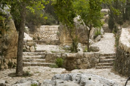 The place emmaus in ISrael where Jesus Christ walked