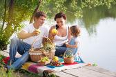 Rodina na piknik