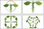 Illustration art of a herbal caduceus logos with isolated background
