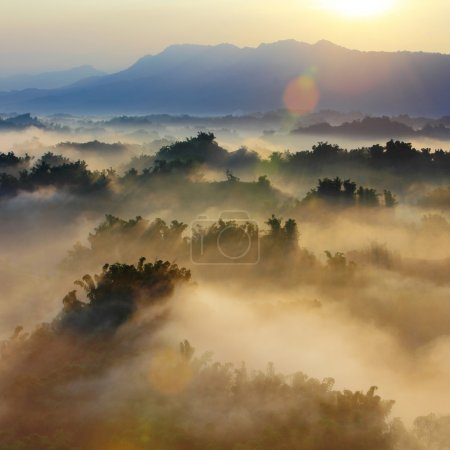 Photo for Sunshine with mountain , cloud and fog in the morning - Royalty Free Image