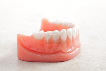 Dentures isolated on a white background....