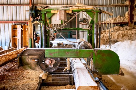 Photo pour Usine de production de bois industriel - grand scie industrielle coupant des arbres - image libre de droit