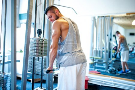 Athletic fitness coach, bodybuilder training at gym, triceps exercises