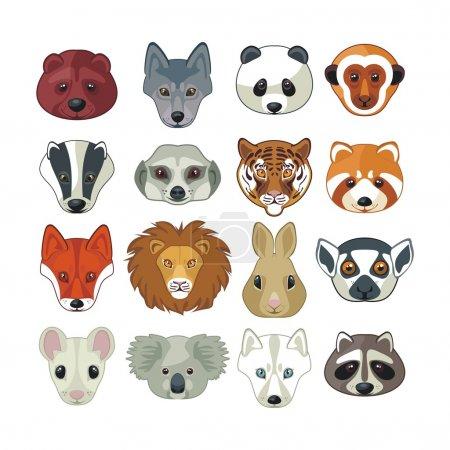 Animal Heads Set