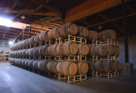 Inside a winery cavern with oak barrels and vats, fermentation and storage tanks