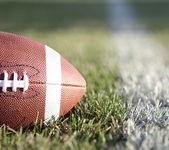 Football americano sul campo con con linea yard e verde erba