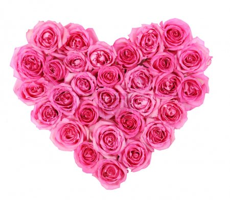 Photo for Pink roses in heart shape isolated isolated on white background - Royalty Free Image