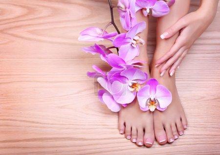 Photo pour Soins des pieds. pédicure avec fleurs d'orchidée roses sur fond en bois. belles femelle pieds et mains avec manucure français. Spa - image libre de droit