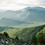 Summer in the Ukrainian Carpathians. Wild Gorgan...