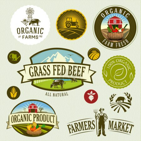 Illustration for Organic & farm-vector labels and elements - Royalty Free Image