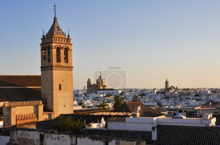 Panoramic view of Marchena, Seville (Spain)
