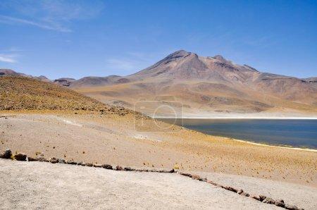 Miniques lagoon in San Pedro de Atacama, Chile