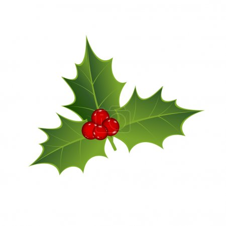 Mistletoe and red berry's....
