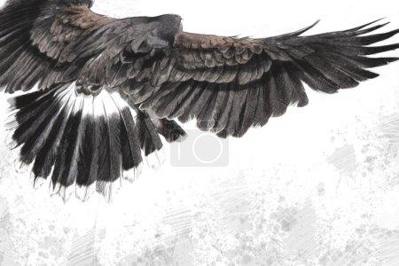 Low-flying eagle illustration over artistic background, made wit