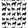 Many Dog Species in silhouettes...
