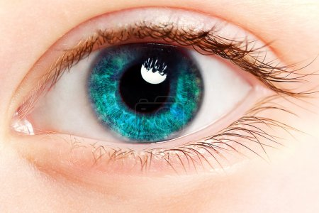Eye Makeup. Beautiful Eyes Glitter Make-up - Stock Image