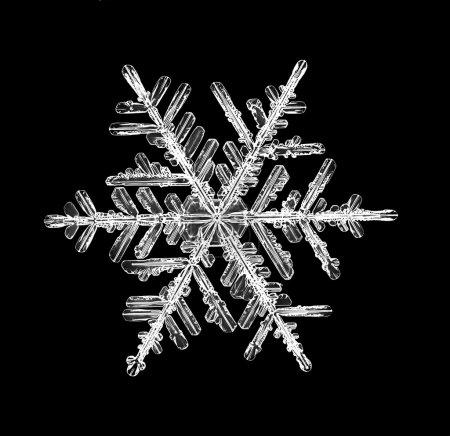 Foto de Snowflake isolated on a black background natural - Imagen libre de derechos