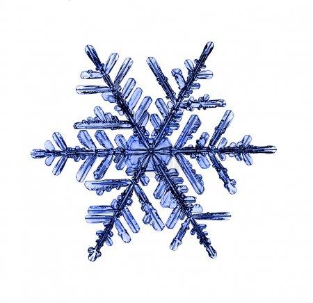 Foto de Copo de nieve Navidad natural, aislado sobre fondo blanco - Imagen libre de derechos