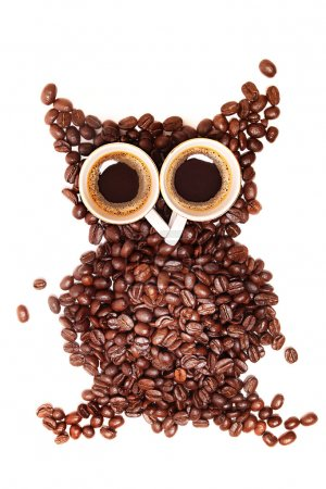 A funny owl, made of coffee seeds and two caps