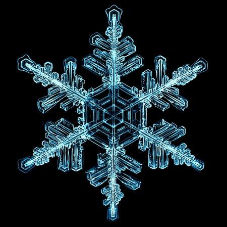 Foto de Solo patrón de Navidad, copo de nieve natural, agua cristalina, aislado sobre un fondo negro, blanco - Imagen libre de derechos
