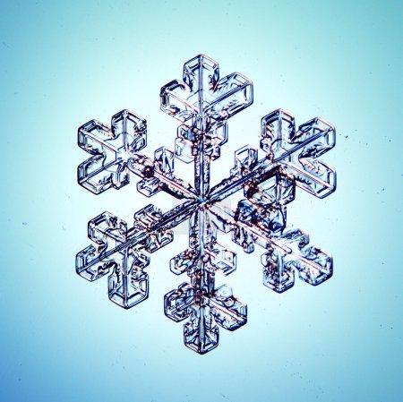 Photo pour Flocon de neige cristal de glace - image libre de droit
