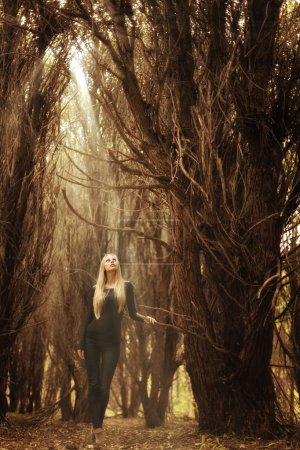 Beautiful young girl in a magical forest, a mysterious fairy tale Halloween