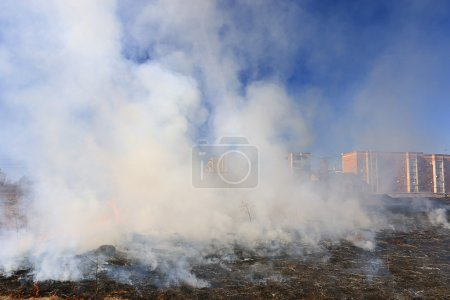 Fire burns grass