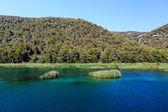 Národní park krka a řeka krka nedaleko města skradin, Chorvatsko
