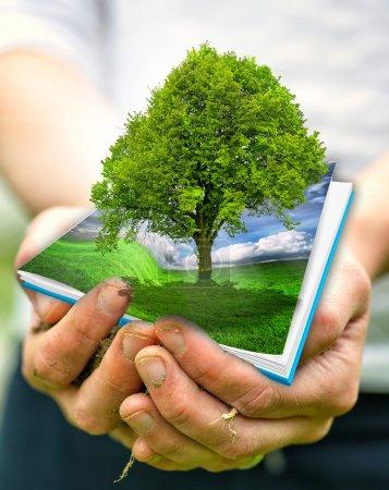 Foto de Planeta verde en sus manos del corazón - concepto del medio ambiente - Imagen libre de derechos