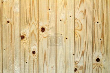 Spruce wainscot  texture