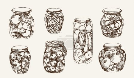 Illustration for Canned fruits and vegetables - Royalty Free Image