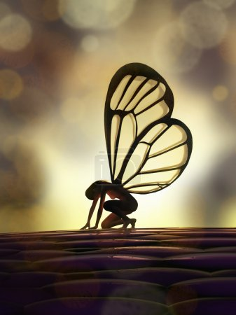 Photo for Fairy butterfly - Royalty Free Image