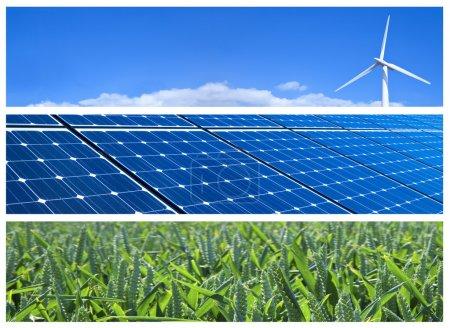Foto de Turbina de viento, paneles solares y campos de trigo. estandartes de las energías renovables - Imagen libre de derechos