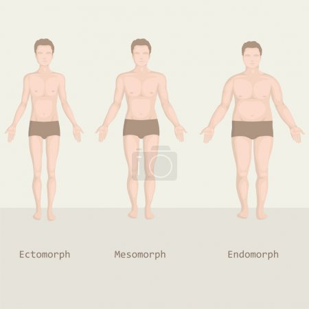 Man body type, from fat to fitness, before and after