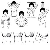 Self exam, breast cancer examination