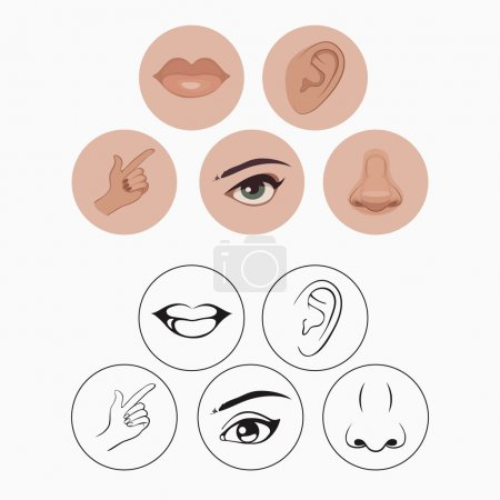 Illustration for Five senses, nose lips eye ear and hand - Royalty Free Image