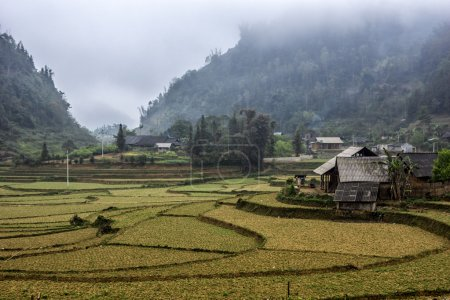 Winter landscape with rice paddies in Northern Mountains.