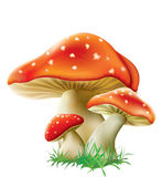 Three red mushrooms