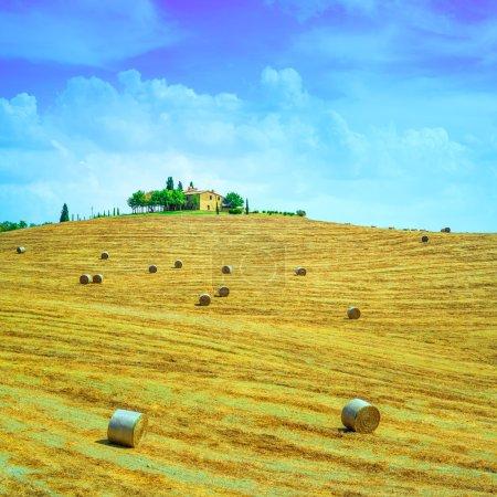 Photo pour Toscane, paysage rural agricole, au sommet de la colline, rouleaux de foin et champs verts récoltés. Val d Orcia, Italie, Europe . - image libre de droit