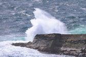 Ocean wave breaking on the rocks. Scotland, Uk
