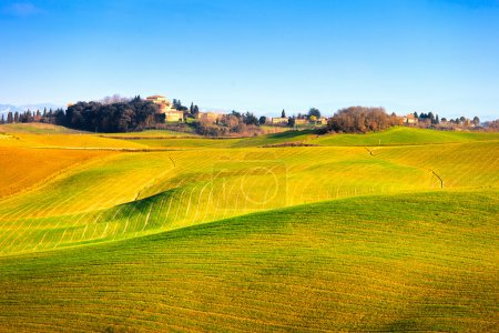 Tuscany, Crete Senesi green fields and rolling hills landscape,