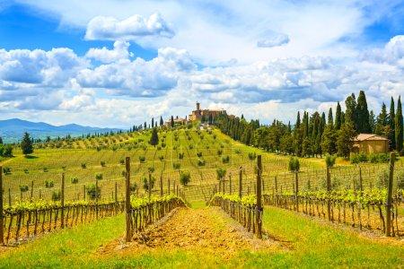 Tuscany, vineyard, cypress trees and village. Rural landscape, I